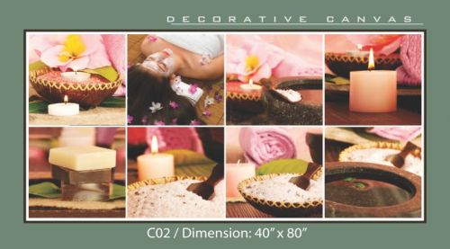 Decorative Canvas - C02